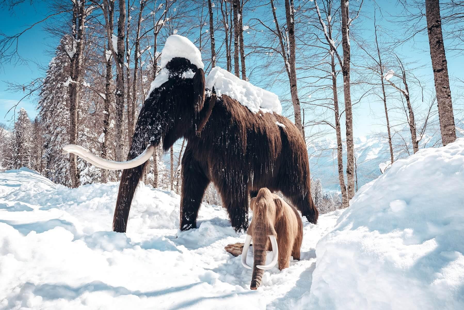Парк Ледниковый период