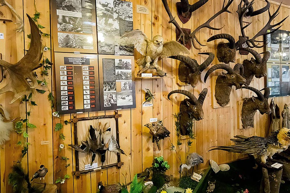 Музей альпинизма имени Высоцкого