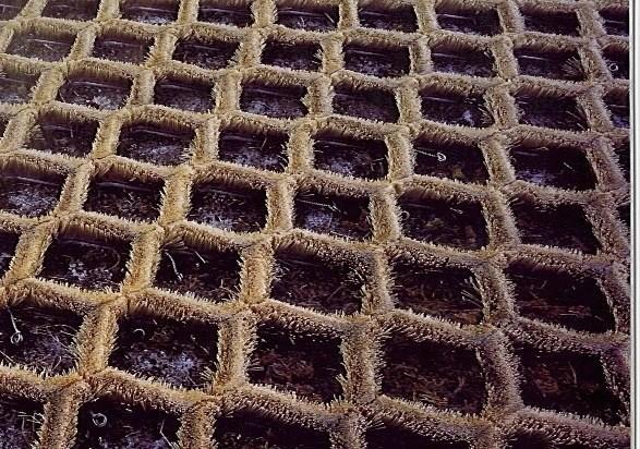 «Щетинистые» материалы для сухих склонов
